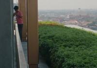 11階ベランダに「盗人あらわる!?」
